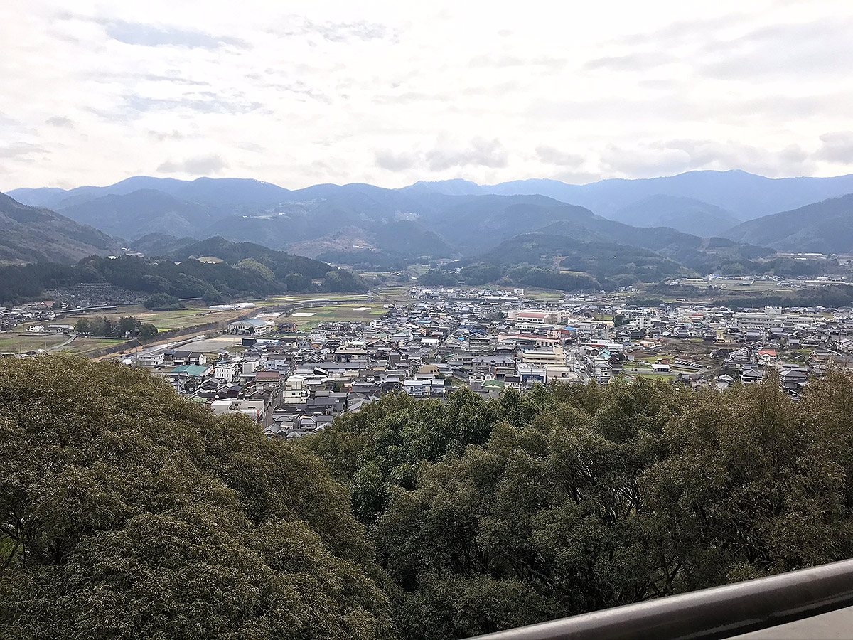 愛宕神社からの野村町